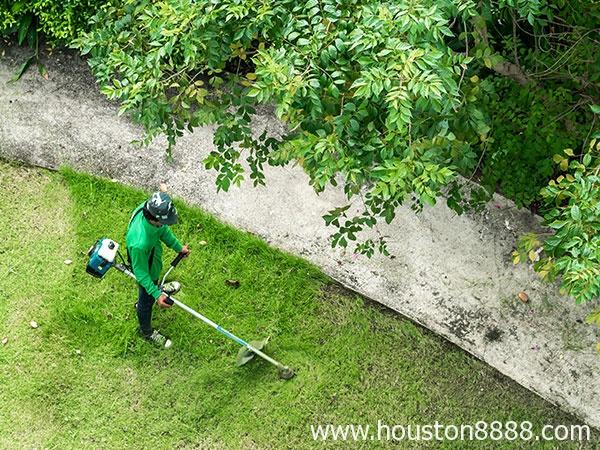 Hình ảnh dịch vụ cắt cỏ dọn dẹp sân vườn cho người Việt ở Houston