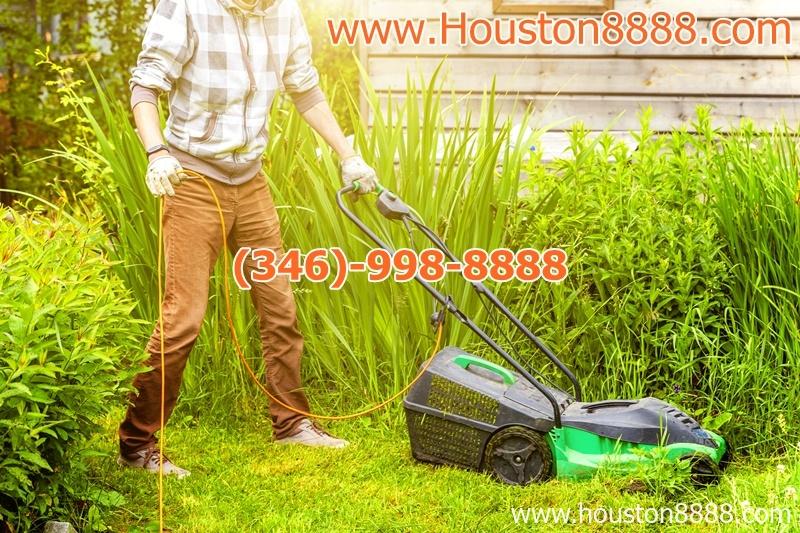 Dịch vụ cắt cỏ dọn dẹp sân vườn tại Houston người Việt chuyên nghiệp