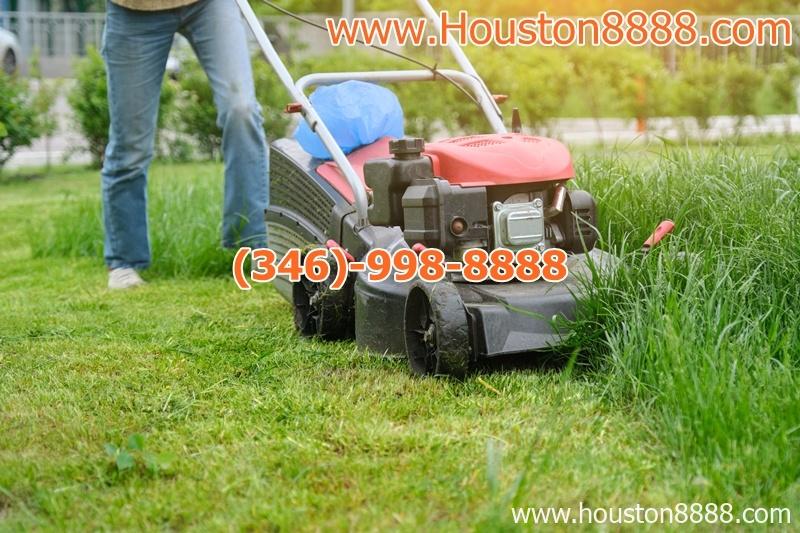 Nhận cắt cỏ sân vườn cho người Việt ở Houston làm việc tận tâm uy tín