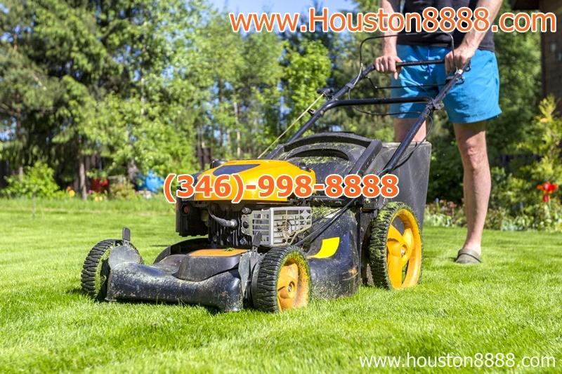 Chuyên làm dịch vụ cắt cỏ tại nhà ở Houston người Việt đáng tín cậy