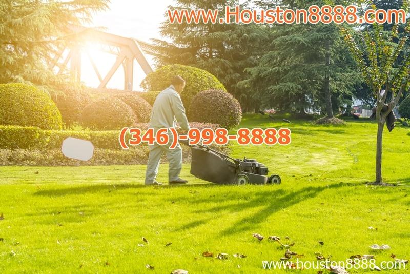 Nhận cắt cỏ cho sân vườn tư gia và business giá rẻ ở Houston