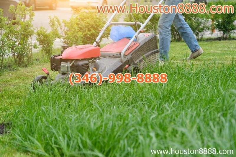 Chuyên làm dịch vụ cắt cỏ cho tư gia và business tại Houston giá rẻ làm việc tận tâm